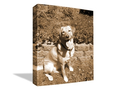 "11"" x 14"" Photo to Canvas Art: Sepia - $69.99"