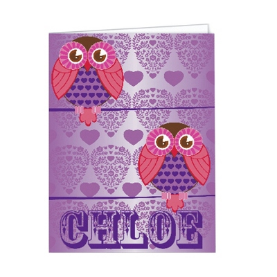 Hoot Hoot Set of 2 Folders - Children's School Gifts