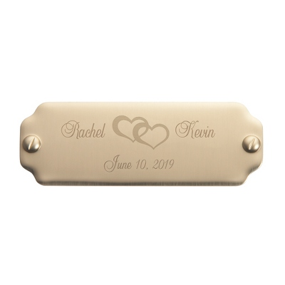 "7/8"" x 2 1/2"" Brass Plate with Screw Design"