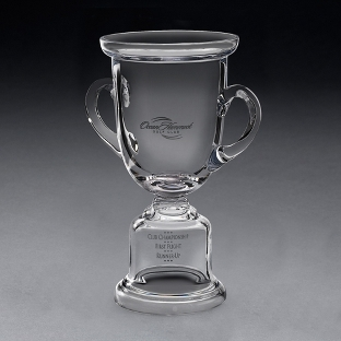Image of Adriondack Award