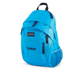 Image of JanSport Wasabi Laptop Backpack Swedish Blue